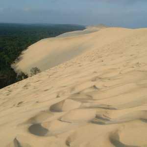 Dunes de sable panorama du pyla