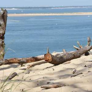 Plages de la dune du pilat en charente maritime